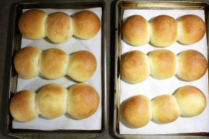 Buttermilk Yeast Roll - nobutter