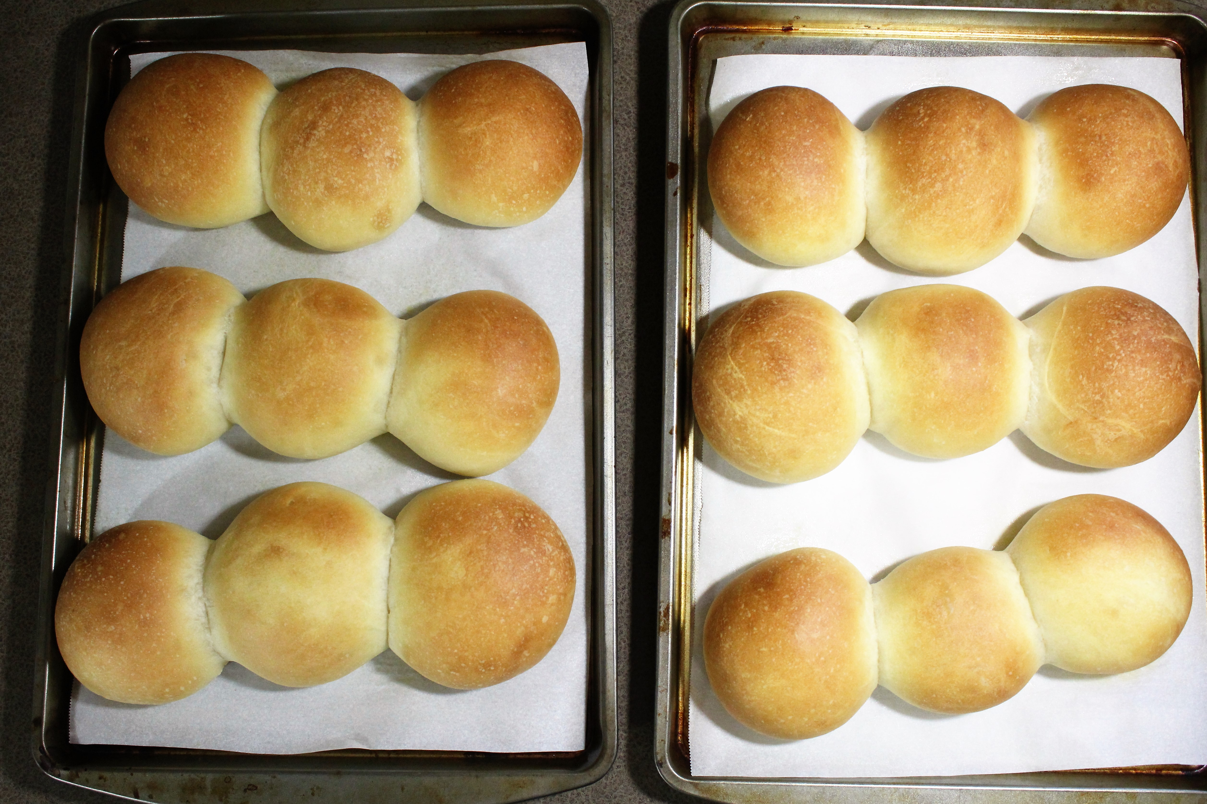 Buttermilk Yeast Roll - nobutter